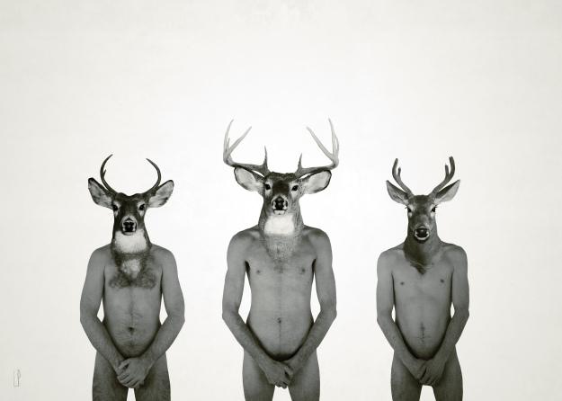 Le cerf et ses fils / Luc Pallegoix, 2014. Encre pigmentaire sur papier Moab blanc 300 gr. Disponible en grand format |50 x 70 cm 5 ex.|