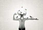 L'oiseleur déployé / Luc Pallegoix, 2014. Encre pigmentaire sur papier Moab blanc 300 gr. Disponible en grand format |50 x 70 cm 5 ex.| et en moyen format |A4 ou 8,5*11 10 ex.|