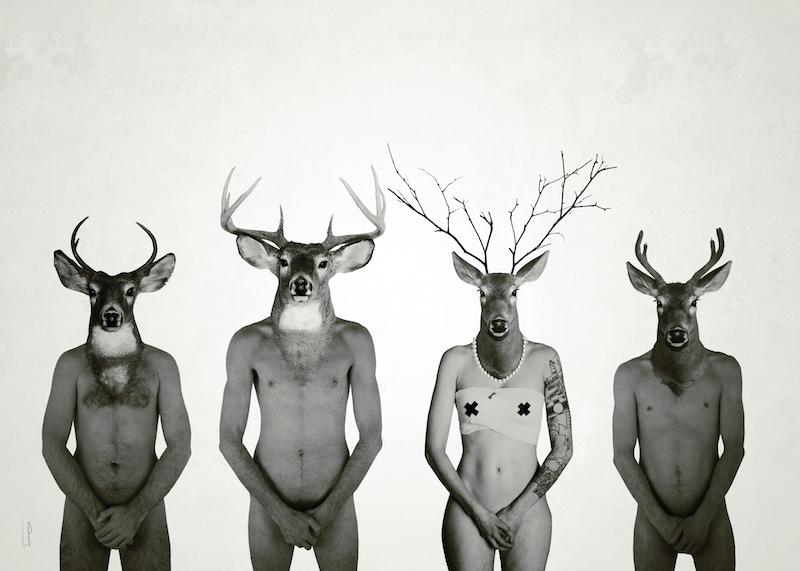 Les trois mousquetaires / Luc Pallegoix, 2015. Encre pigmentaire sur papier Moab blanc 300 gr. Disponible en grand format |50 x 70 cm 5 ex.| ou moyen format | 8,5 x 11 ou A4 10 ex. |