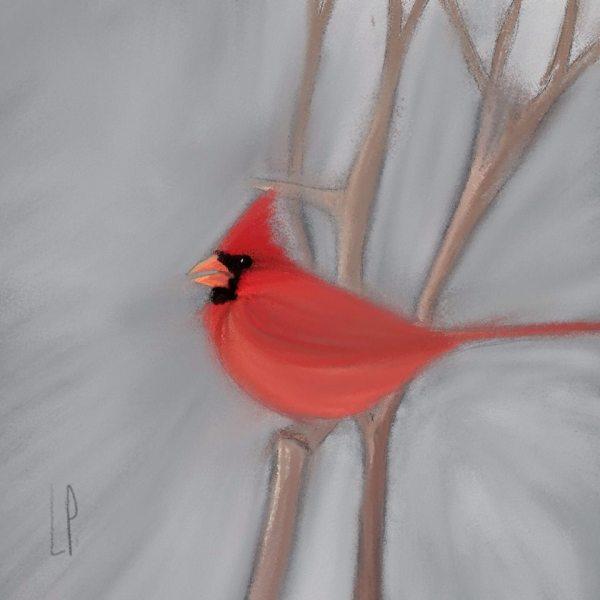 Il y a un cardinal dans la cour / Luc Pallegoix, 2014