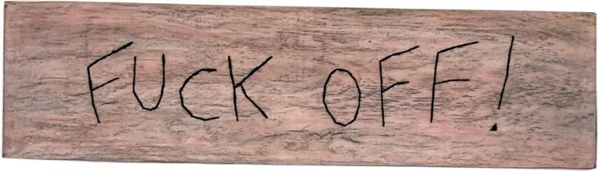 Fuck off ! / Luc Pallegoix, 2015.  Série : Planches brodées - Embroidered board, acrylique sur bois brodé au Phentex, 125 x 33 cm.  💵 450 $ + taxes Jusqu'au 31 décembre 2017.