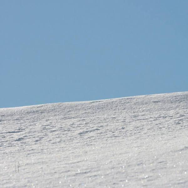 Jour de lessive / Luc Pallegoix, 2014. Encre pigmentaire sur papier Moab blanc 300 gr. Disponible en grand format |50 x 50 cm 5 ex.| ou moyen format | 23 x 23 cm 10 ex. |