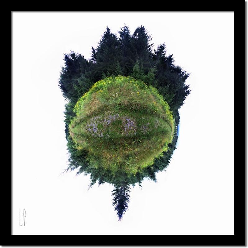 Le regard sur le monde / Luc Pallegoix, 2016. Encre pigmentaire sur papier Moab blanc 300 gr. [50 x 50 cm] 15 ex.  600 $ + taxes, [ 23 x 23 cm] 30 ex. 200 $ + taxes