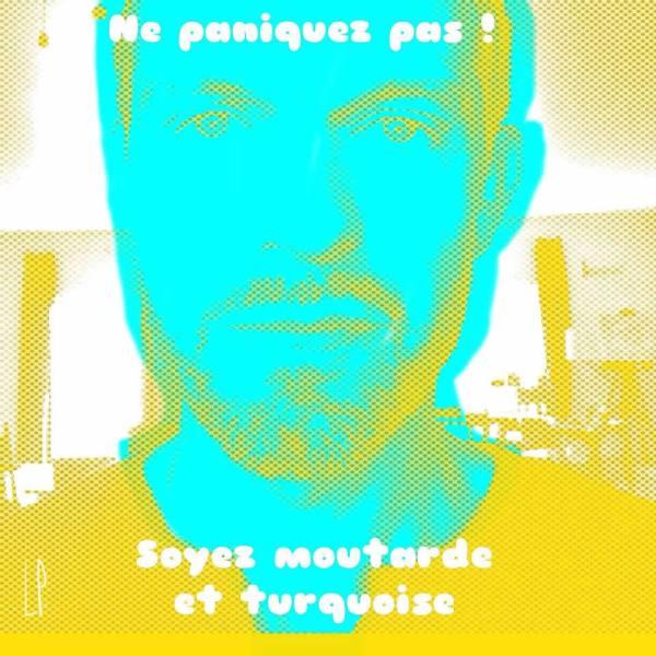 Ne paniquez pas /Luc Pallegoix, 2013.