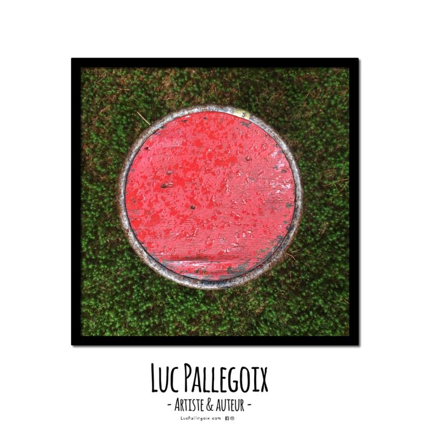 Vendu ! / Luc Pallegoix, 2016. Série : NATURE Encre pigmentaire sur papier Moab blanc 300 gr. FOR SALE ART À VENDRE 📣👨🏻🎨 🔲 23 x 23 cm Cadre noir 💵 150 $ + taxes Jusqu'au 31 décembre 2017. 🌍 Catalogue : lucpallegoix.com 📬 Contact : lucpallegoix.com/hello/ 📷 Instagram : instagram.com/lucpallegoix/ 🏛 Atelier : atelierauckland.com