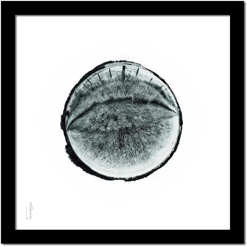 Les faux-cils / Luc Pallegoix, 2017. Encre pigmentaire sur papier Moab blanc 300 gr. [50 x 50 cm] 5 ex.  500 $ + taxes, [ 23 x 23 cm] 10 ex. 150 $ + taxes