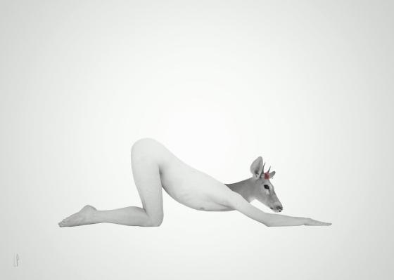 La saillie imminente / Luc Pallegoix, 2016. Encre pigmentaire sur papier Moab blanc 300 gr. Disponible en grand format  50 x 70 cm 5 ex.  ou moyen format   8,5″ x 11″ 10 ex. . Trois autres numéros sont réservés pour des très grands formats.